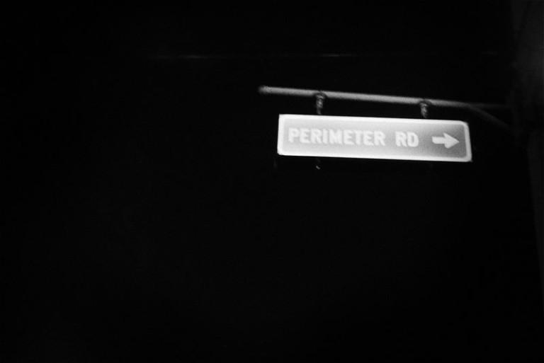 asanerlynch + saner